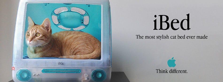 diy une couchette pour tous les chats geeks blog take me home. Black Bedroom Furniture Sets. Home Design Ideas
