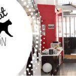 etes vous pr ts pour l 39 arriv e d 39 un chat blog take me home. Black Bedroom Furniture Sets. Home Design Ideas