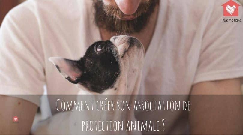 Creer Une Association De Protection Animale Comment Faire Blog