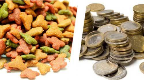 alimentation chien chat economique