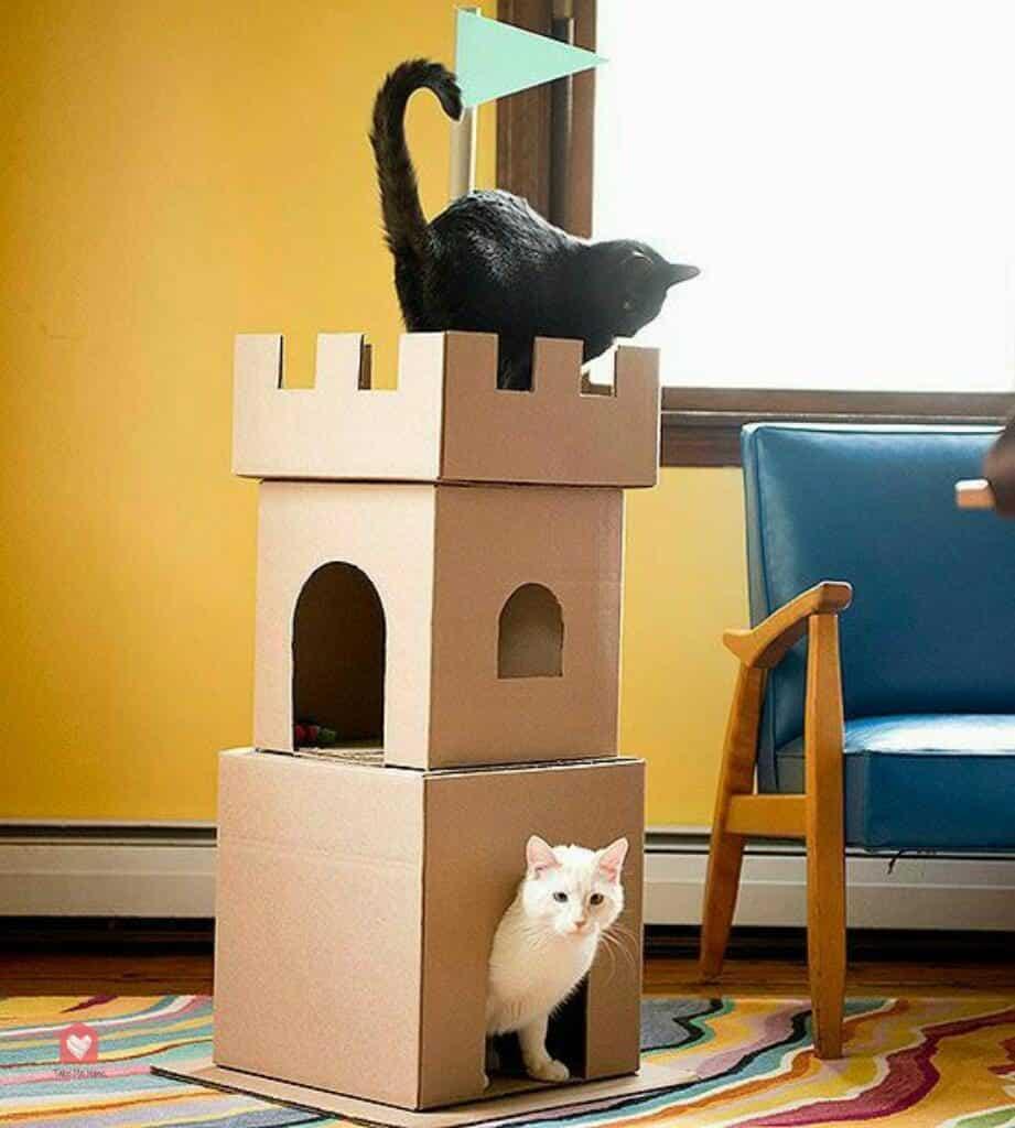 Arbre A Chat Mural Design fabriquer un arbre à chat : 6 idées faciles et pas chères