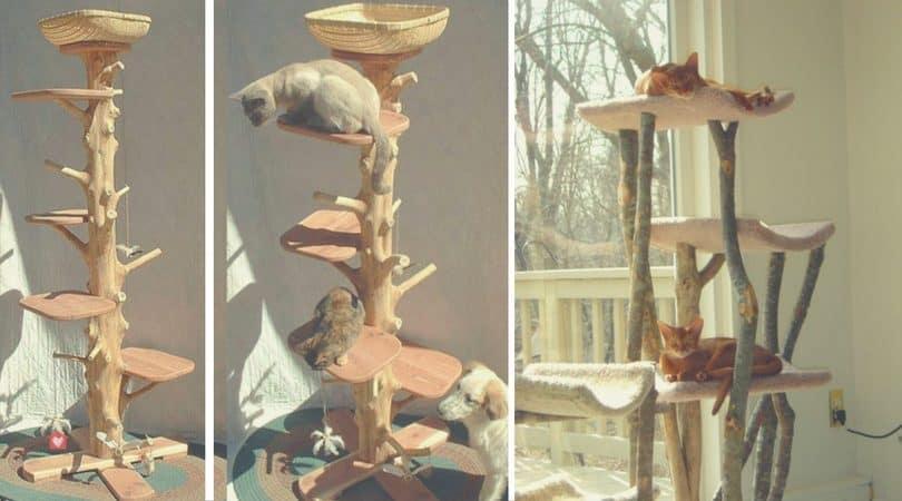 fabriquer un arbre chat 6 id es faciles et pas ch res. Black Bedroom Furniture Sets. Home Design Ideas