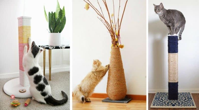 fabriquer un griffoir 5 solutions pas ch res blog take me home. Black Bedroom Furniture Sets. Home Design Ideas